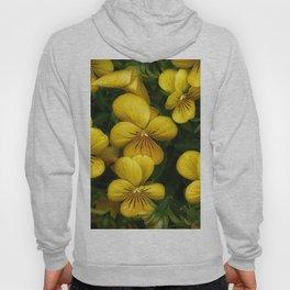 Macro photo golden flowers Hoody