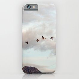 Migration of the Birds // Mountain and Sky Meets Nature Landscape Photography of Wildlife iPhone Case