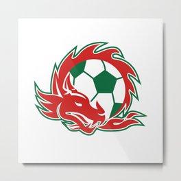 Welsh Dragon Soccer Ball Metal Print