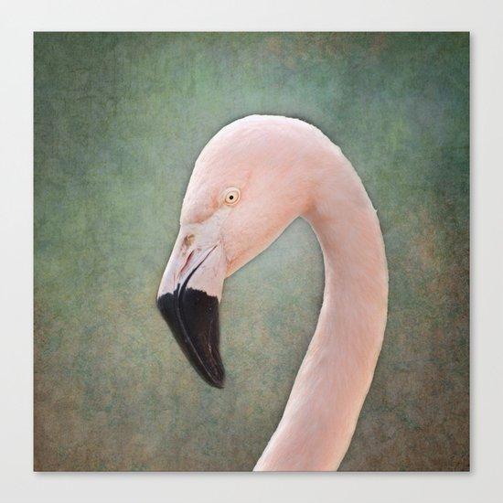 The solitary Flamingo Canvas Print