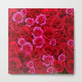 MIXED PINK & RED SPRING ROSES GARDEN  RED VIGNETTE Metal Print