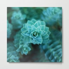 Natural Geometry Metal Print