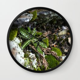Small Fern Wall Clock