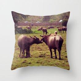 Buffaloes Throw Pillow