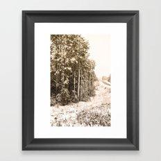 Winter Roadside Framed Art Print