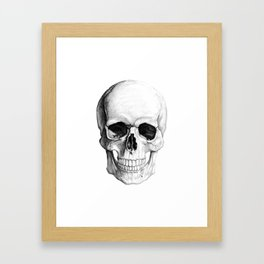 Human Skull Skeleton Framed Art Print