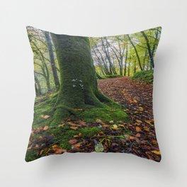 Autumn Forest Walk Throw Pillow