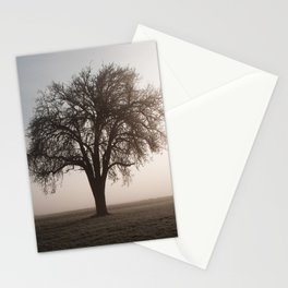 Solitude Frost Stationery Cards