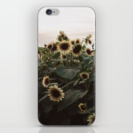 In The Sunflower Field iPhone Skin