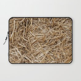 Hay day Laptop Sleeve