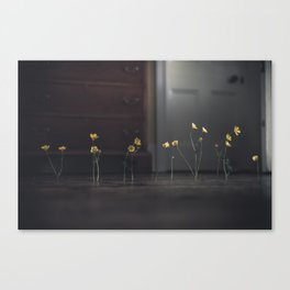 Flowers and Floorboards Canvas Print