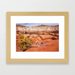 Hanging on the cliff at Kodachrome Basin State Park Framed Art Print