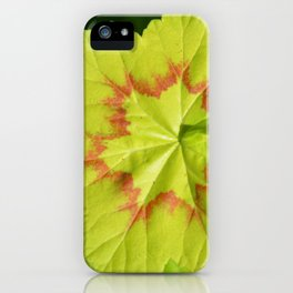 #39 iPhone Case