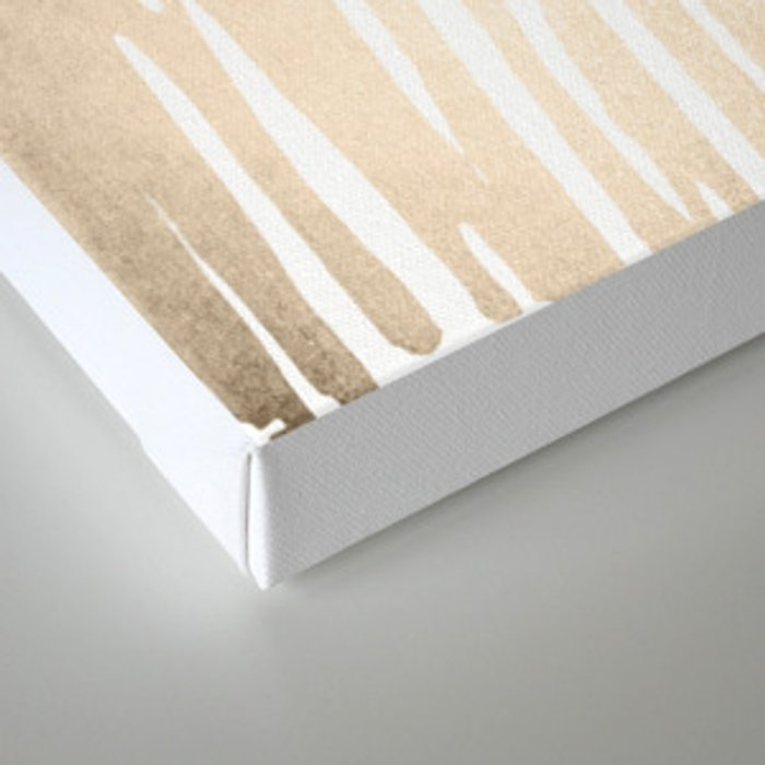 White Gold Sands Bamboo Stripes Canvas Print