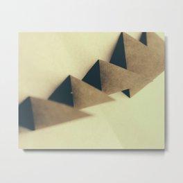Pyramidal Tract Metal Print