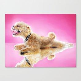 Super Pets Series 1 - Super Cosmo 3 Canvas Print