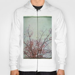 Nature has arms for those who need a hug Hoody