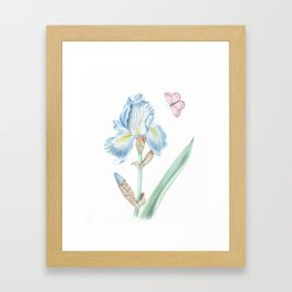 Iris and Butterfly Framed Art Print