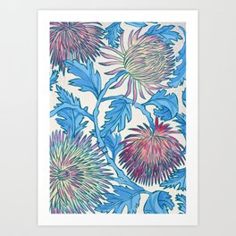 Candied Chrysanthemum Art Print