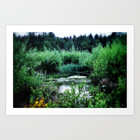 secret lake Art Print