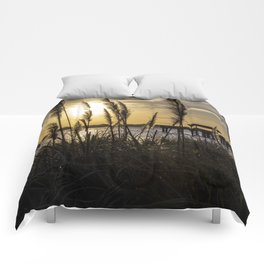 Soft Wind Comforters
