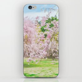 cherry blossoms blooming in a fantastic garden iPhone Skin