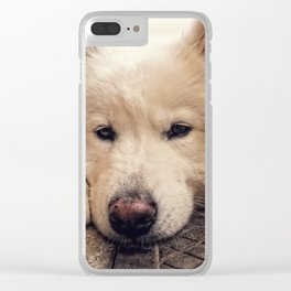 Summer Rest Clear iPhone Case