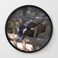 butcher billy Wall Clocks featuring Billy-Goat by MehrFarbeimLeben
