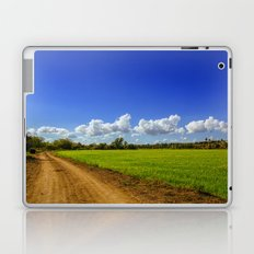 Rice Field Laptop & iPad Skin