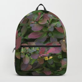 Japanese Barberry Leaves Backpack