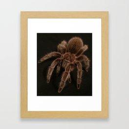 Porteri Framed Art Print