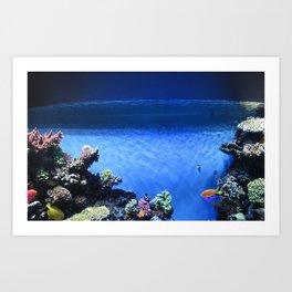 Fish in blue tank Art Print