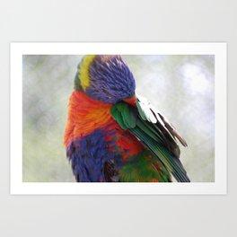Colorful Bird Art Print