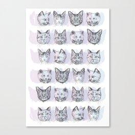 Cats! Cats! Cats! Canvas Print