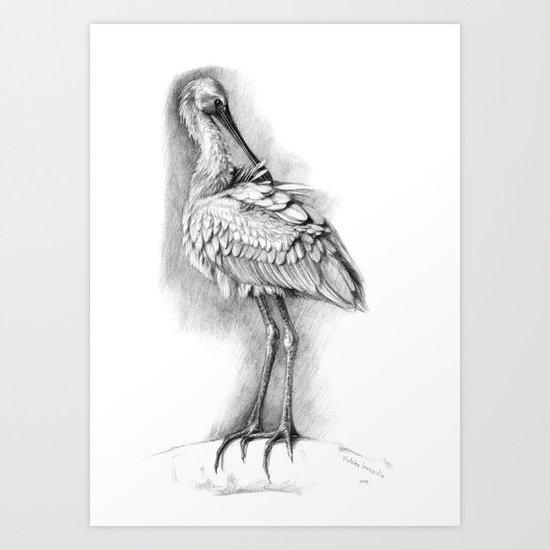 Common Spoonbill G2009-053 Art Print