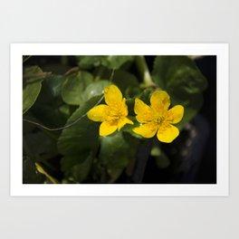 """Fleurs jaunes"" Art Print"