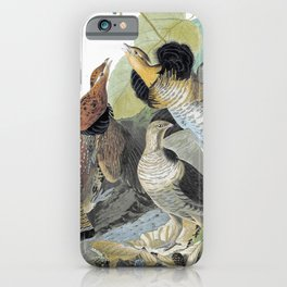 Ruffed Grouse - John James Audubon iPhone Case