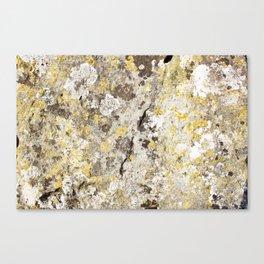 Lichen on The Rollright Stones Canvas Print