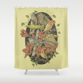 Robins and Warblers Shower Curtain