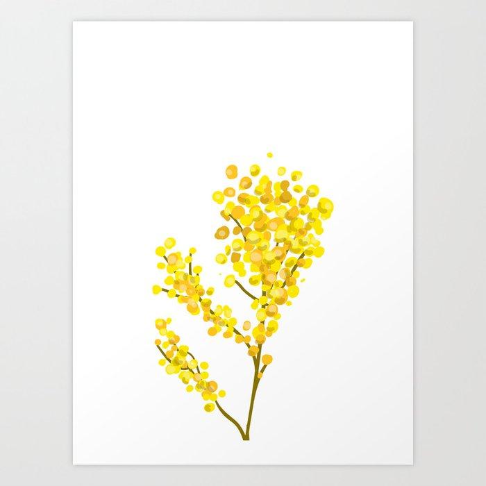 Mimosa 1 Art Print