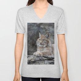 Young lynx portrait Unisex V-Neck