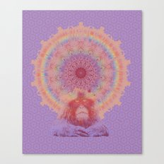 Enlightened monkey Canvas Print