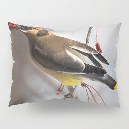 Cedar Waxwing on Branch Pillow Sham