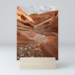 After the Rain - 4, Valley_of_Fire Canyon, Nevada Mini Art Print