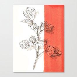 parsley branch nature watercolor orange Canvas Print
