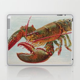 Vintage Illustration of a Lobster (1889) Laptop & iPad Skin