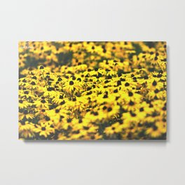 Sea of Summer Metal Print