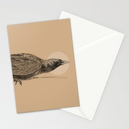 Ready to Fly Stationery Cards