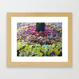 Install 3-3 Framed Art Print