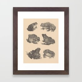 Naturalist Frogs Framed Art Print